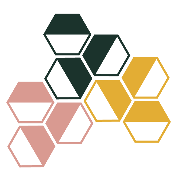 vayas_hex_brand-element.png