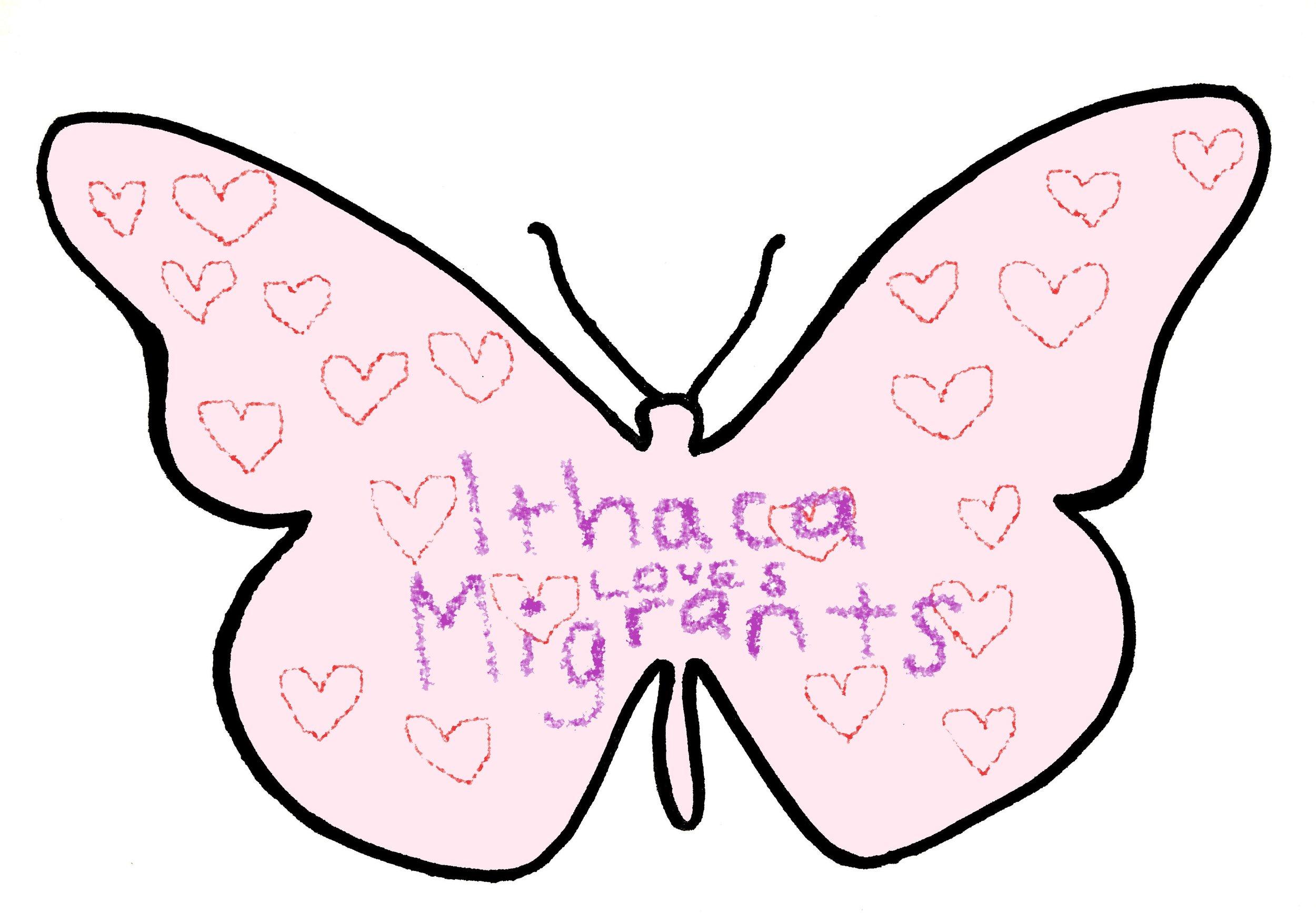 pink butterfly.jpg