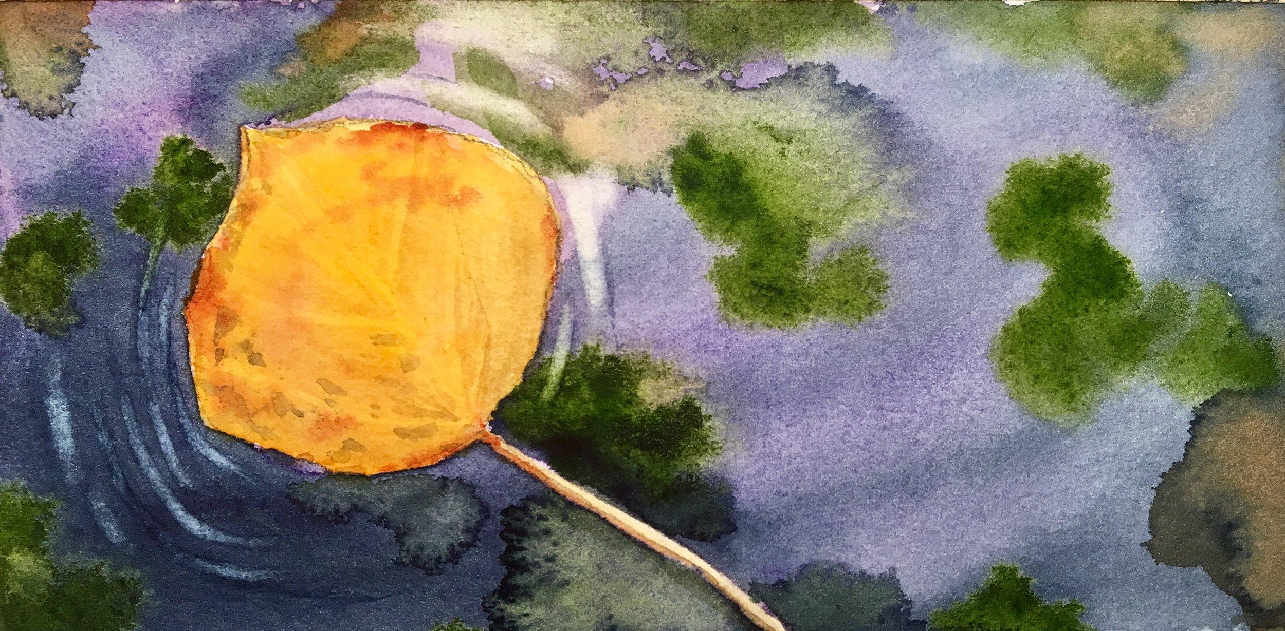 Floating Aspen Leaf.jpg