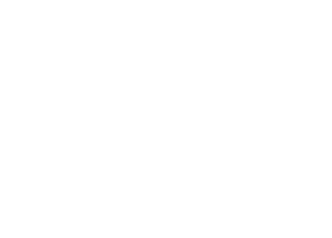 HS_icon2.png