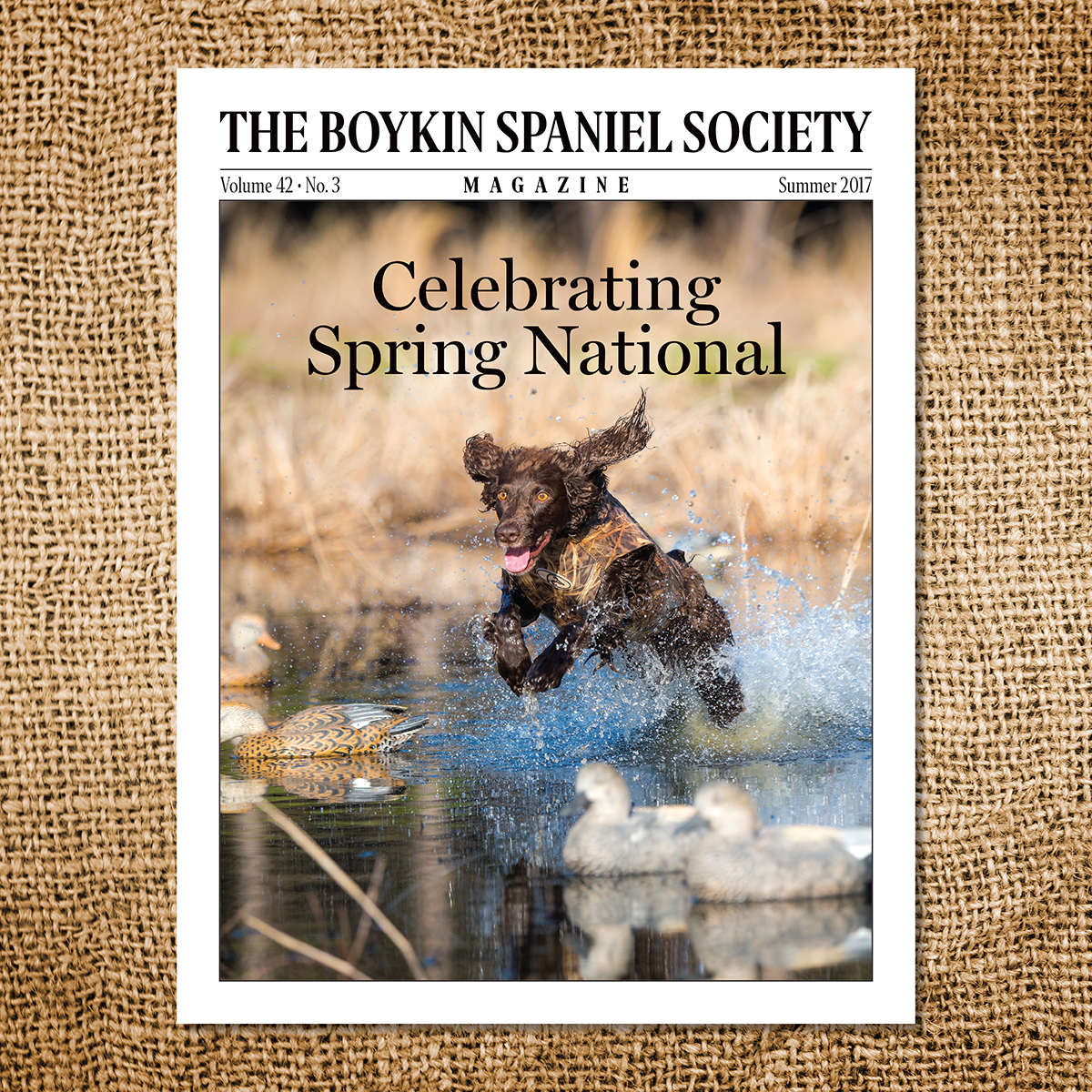 The Boykin Spaniel Society Magazine