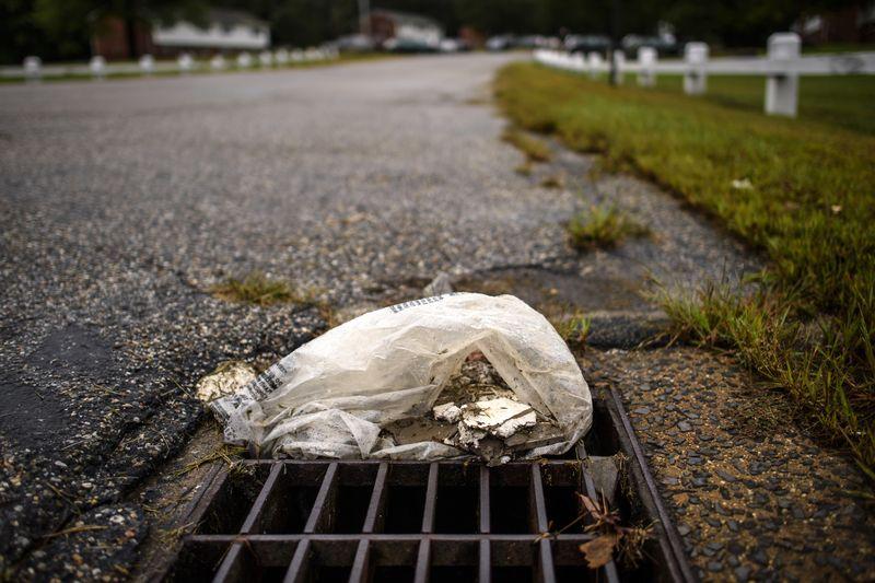 statewide plastic ban image.jpg