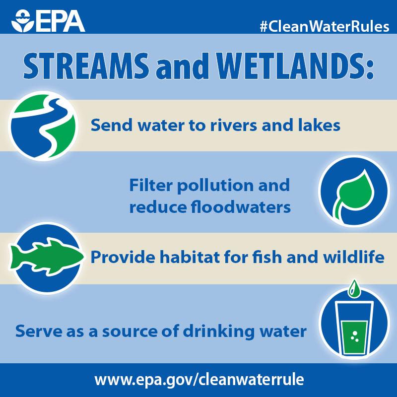 Streams_and_Wetlands_(16823822718).jpg
