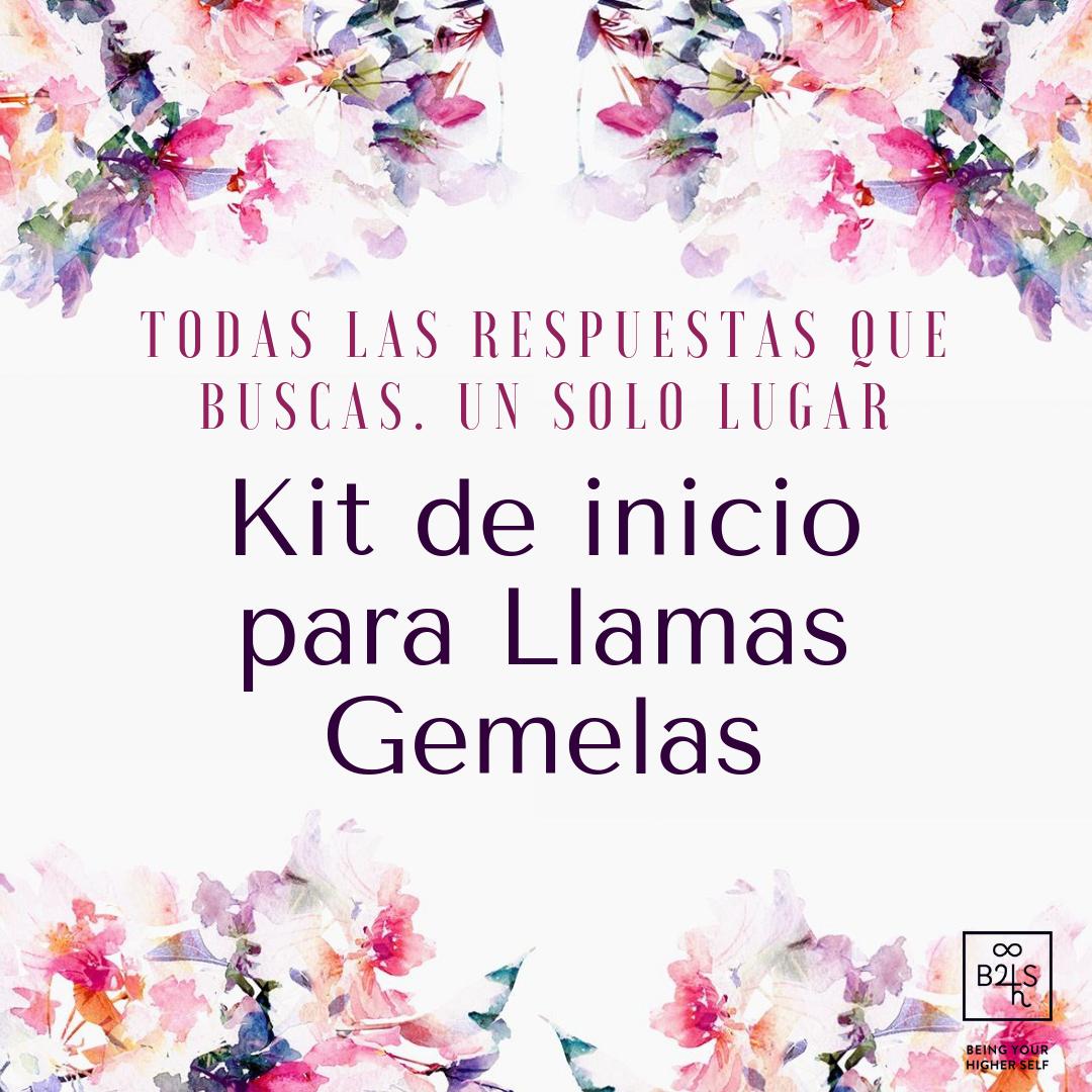 Promo Kit.png