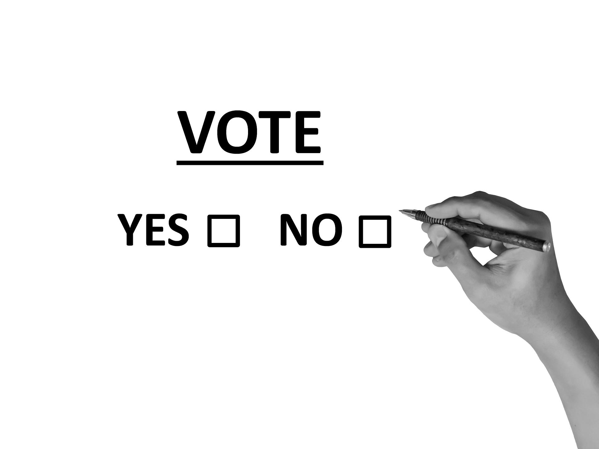 vote-2042580_1920.png