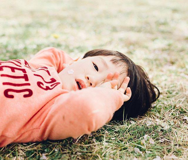 My friends child.It is irresistibly of this child  #cherryblossom #family #kids #5dmark3 #sigma50mmart #vsco #vscocam #kodakportra160
