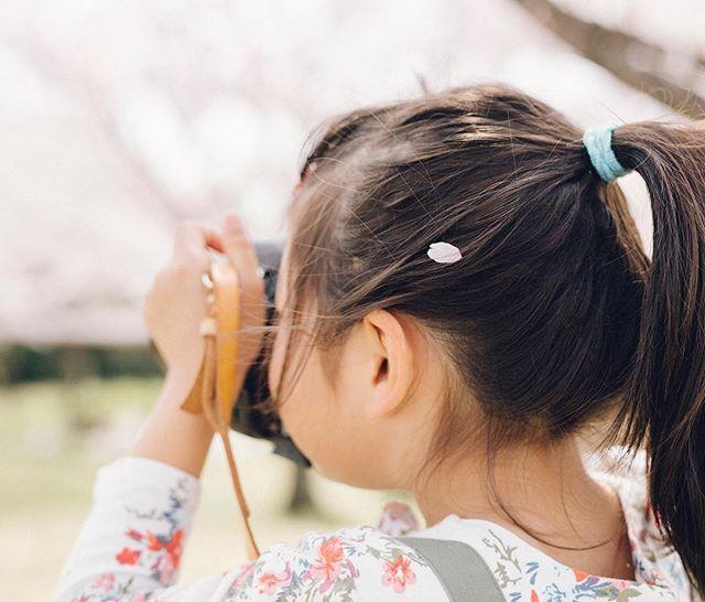 My friends child.She is the best photographer  #cherryblossom #family #kids #5dmark3 #sigma50mmart #vsco #vscocam #kodakportra160