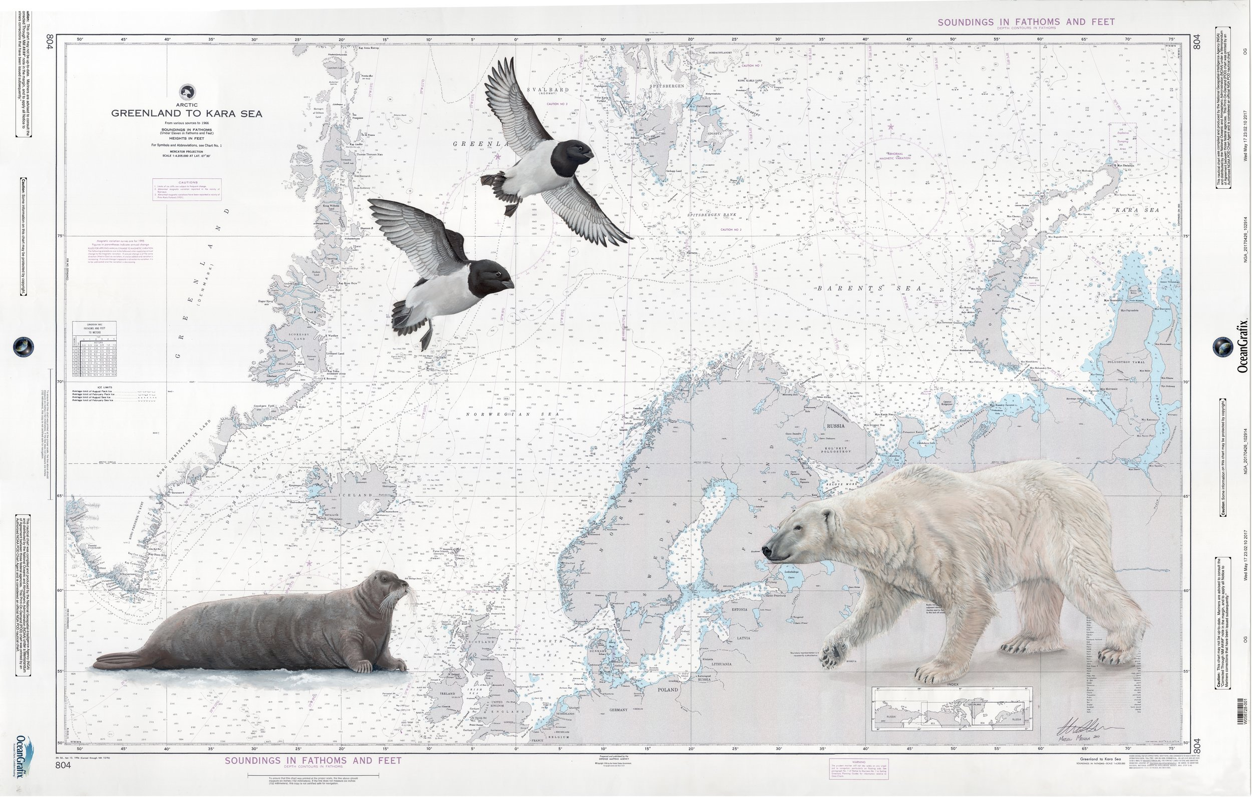 European Arctic Chart - $2000