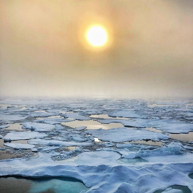Sea ice and fog in the Beaufort Sea, Arctic Canada. . . . #nature #ice #polar #travels #abercrombiekent @aktravel_usa