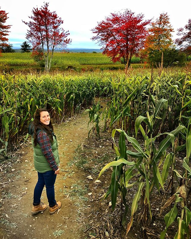 Nothing says 'fall's here' like getting lost in a corn maze for 8-year-olds. . . . #seriouslytho #weusedamap #fall #maine #corn