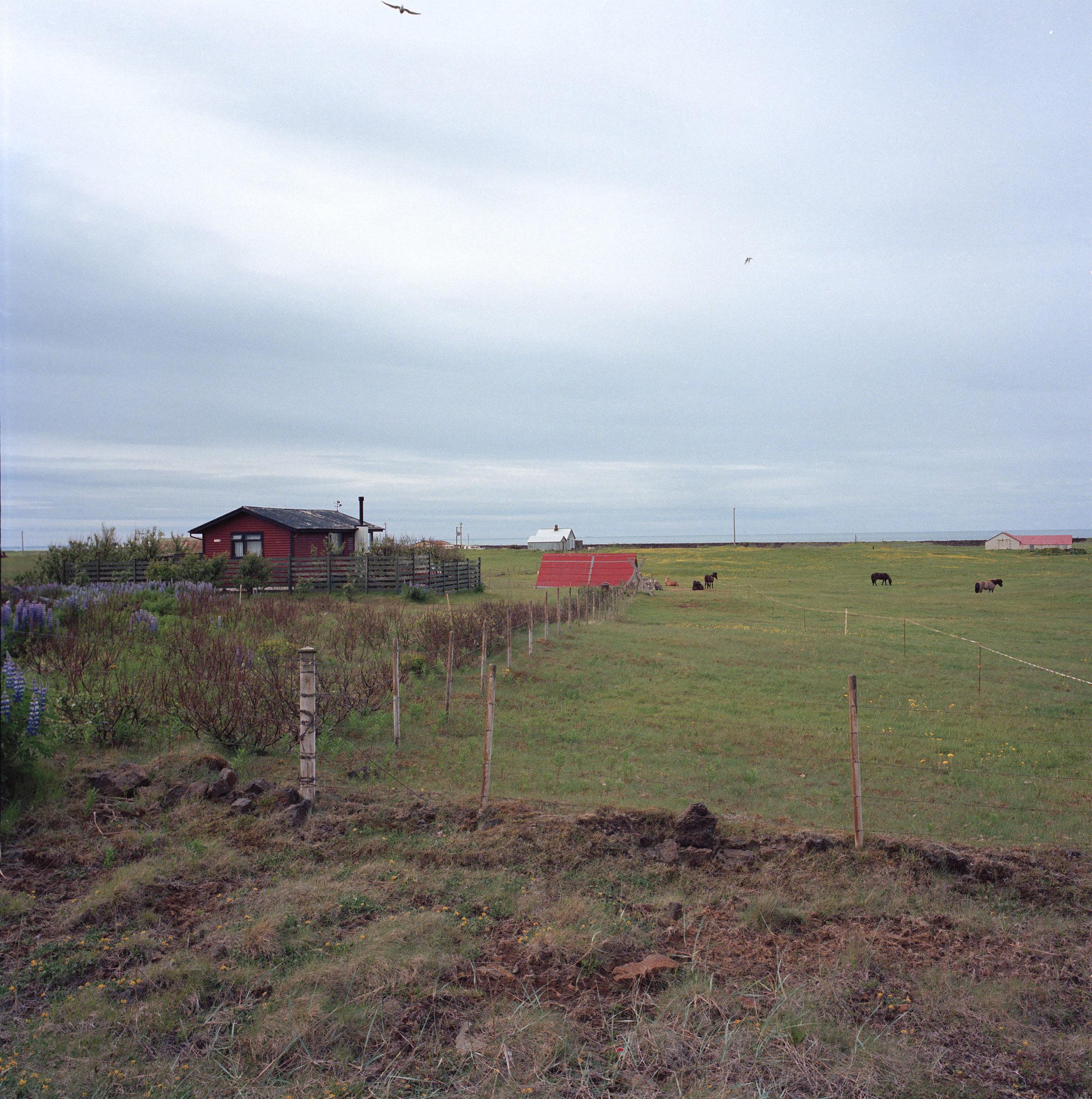 Vik, Iceland (2015)