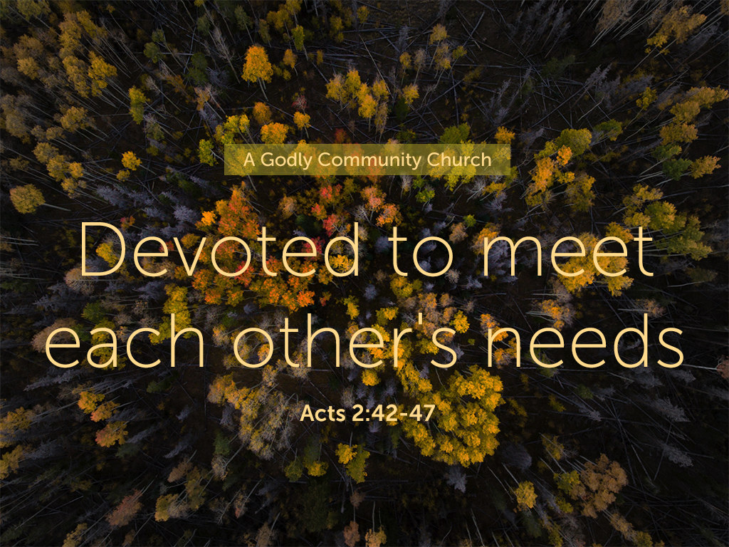Devoted to meet each other's needs_061018_1024x768.png