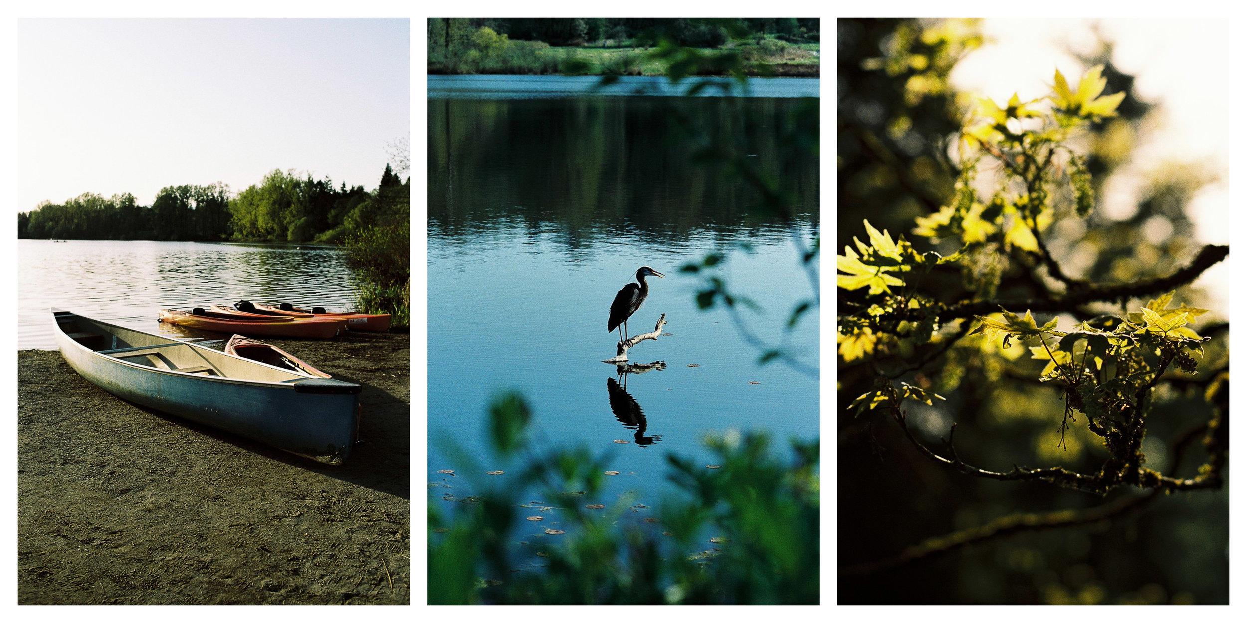 Nikon F3T | Kodak Portra 400 +1 - Kodak Portra 160 +1