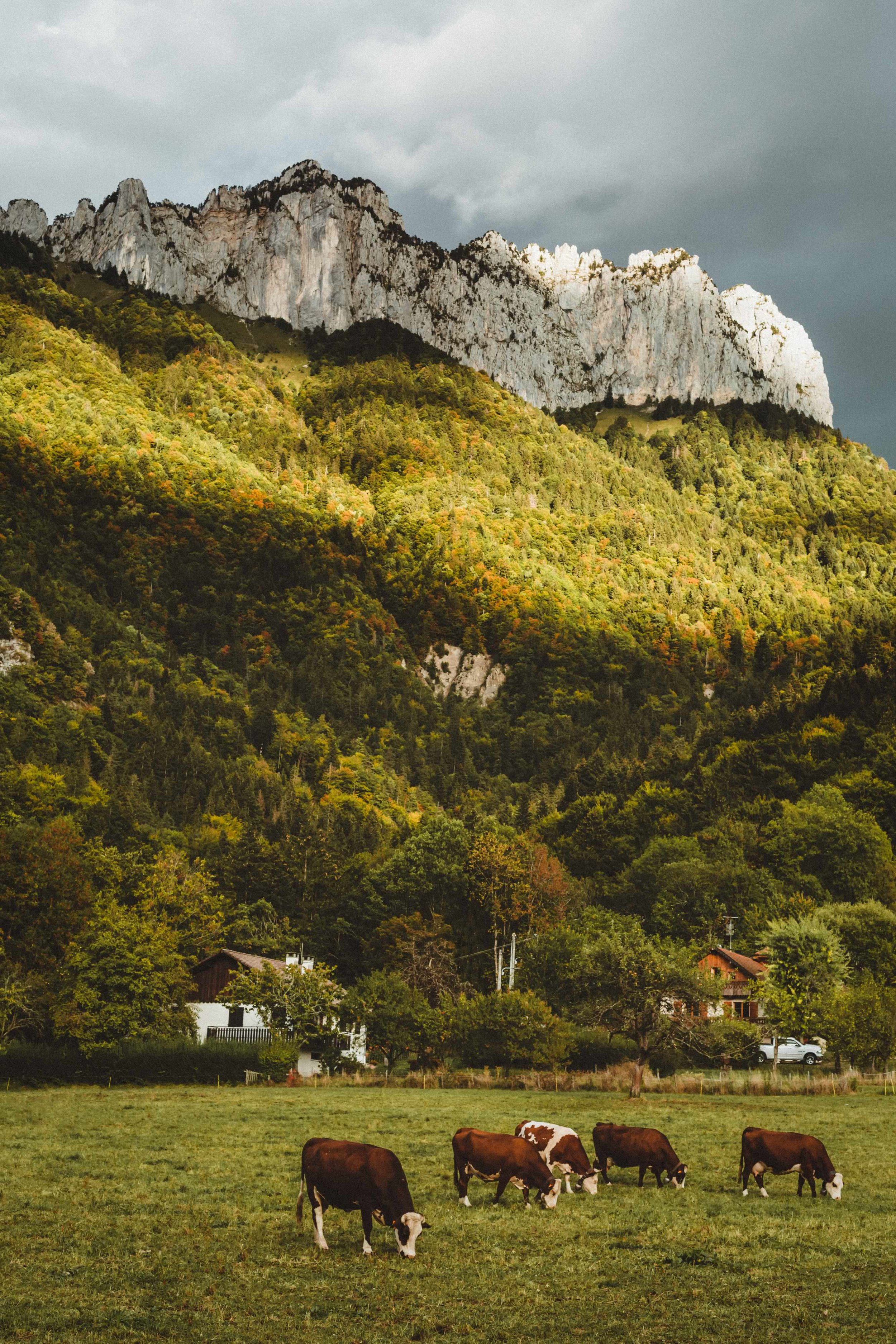 "5 | Tale of the French Alps - That shot represents a familiar scenery. Going to the French Alps many times per year during my childhood to stay in our cabin; it always felt like home there. To the question: ""how're the French Alps?"" I often found myself without an answer. From now one, I can just show this photograph. Haute Savoie, France. September 2018."