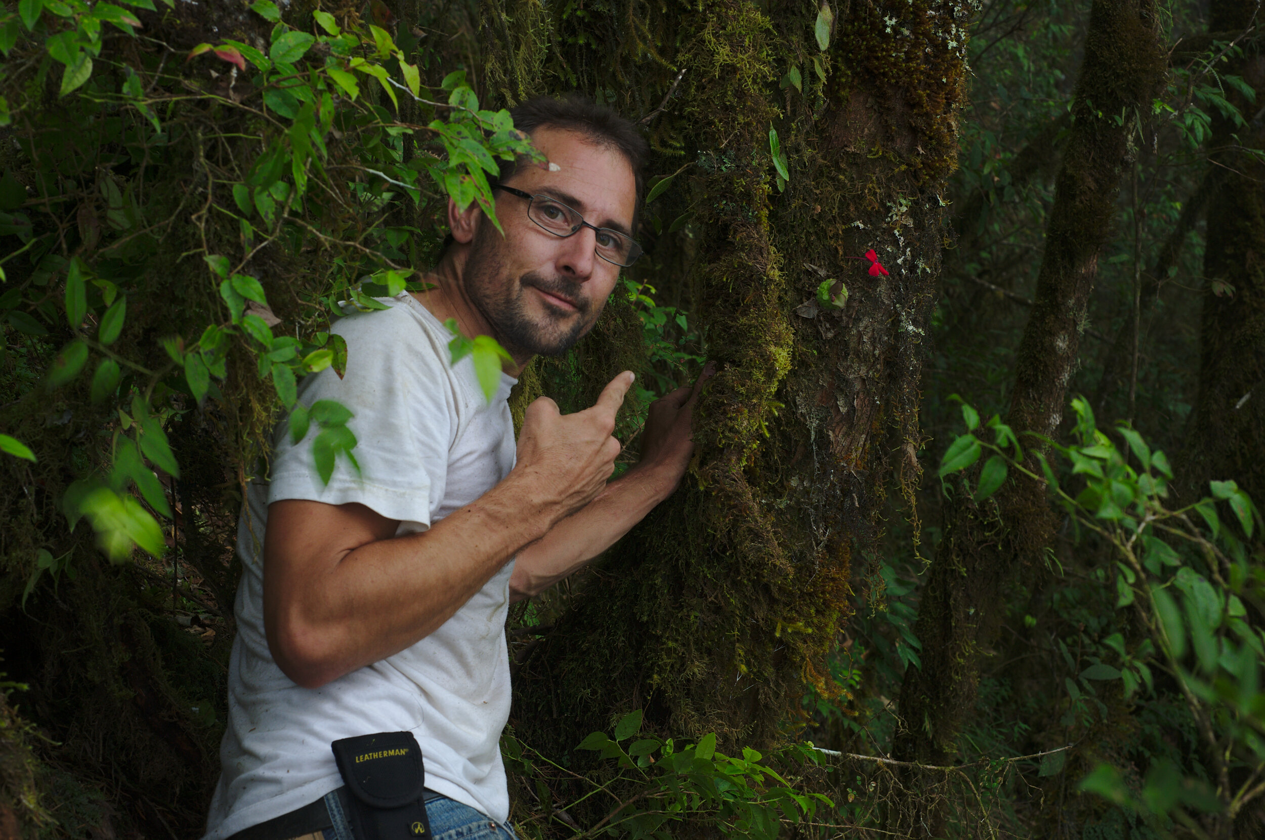 Fred Muller with epiphytic Pinguicula laueana.jpg