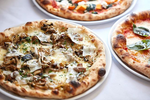 Who's having a tasty Tuesday? Funghi Pizza - Fior Di Latte, exotic mushrooms, garlic, grana padano and truffle oil 🤤. Reservations or Take Away 9696 8963 🍕💙#tastytuesday #pizza #melbournepizza #mushroom #truffle #cheese #truffleoil #albertpark #albertparkrestaurants #3206 #tuesday