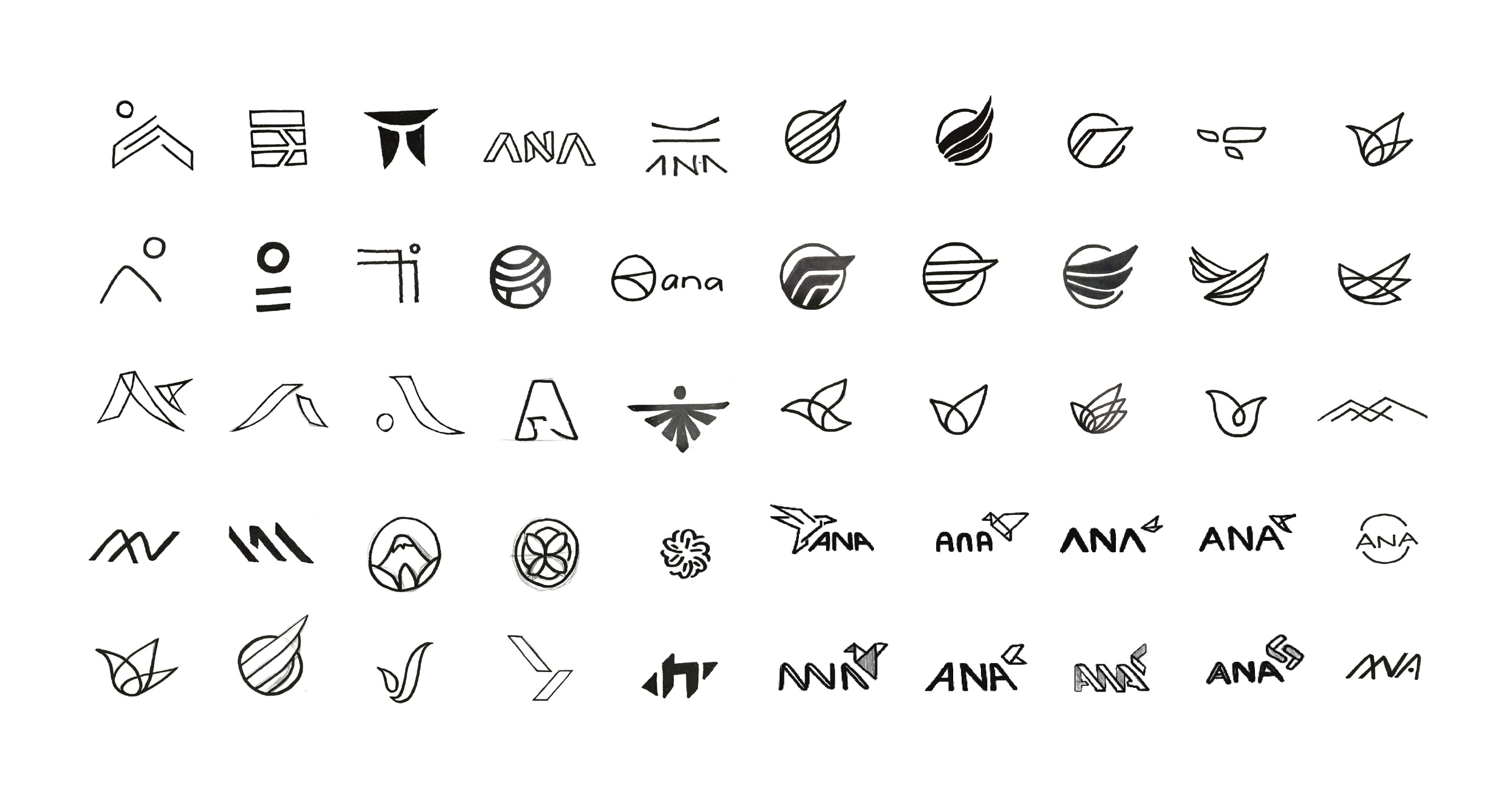ANA5 copy.jpg