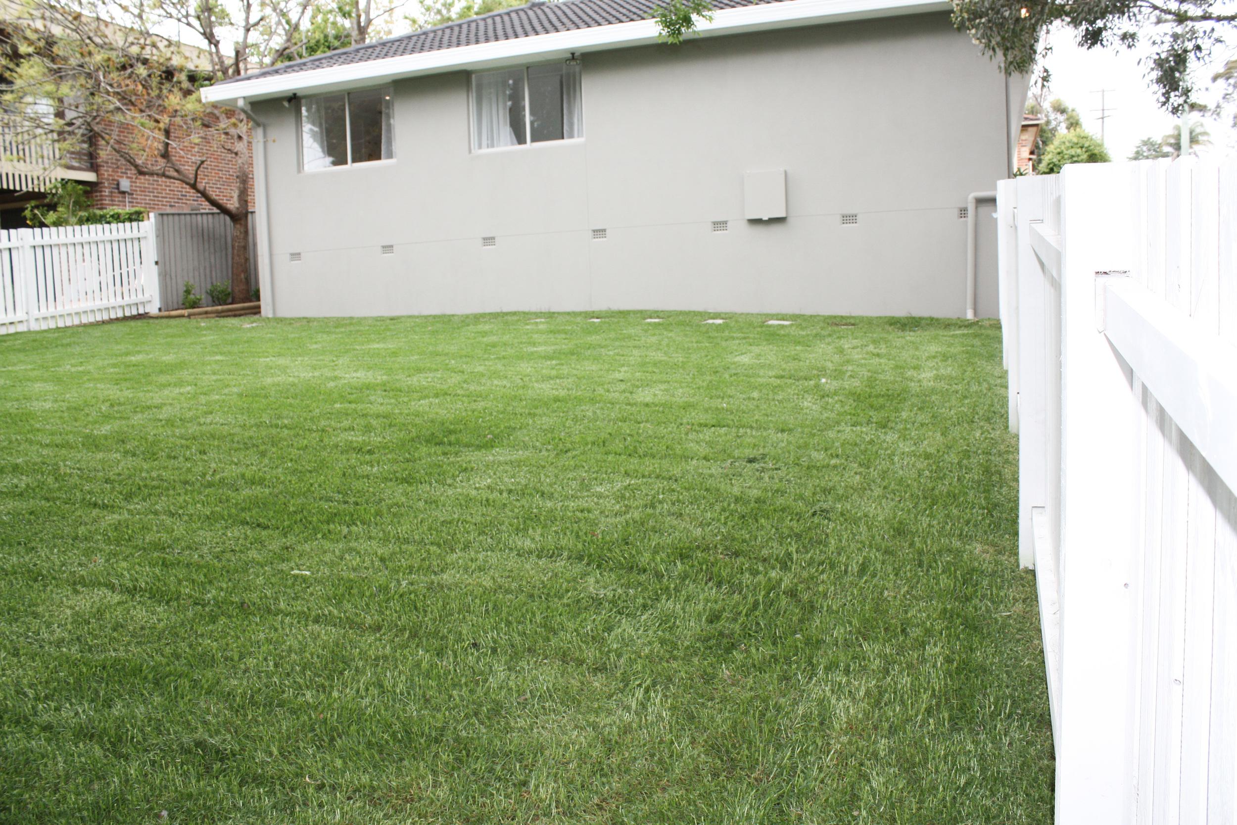 backyard after.jpg