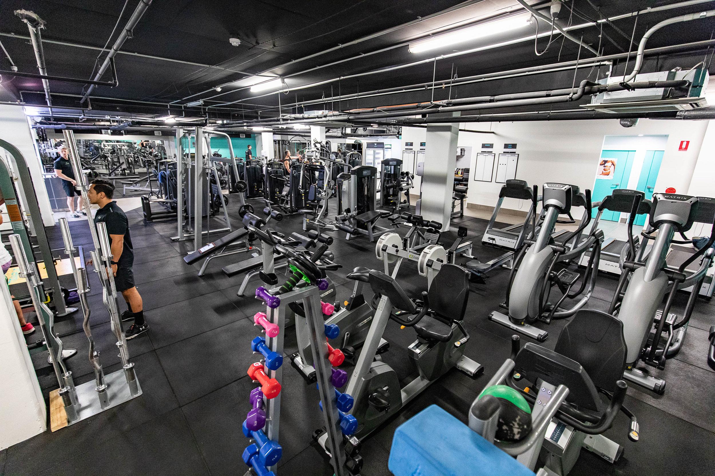 Temple Gym.jpg