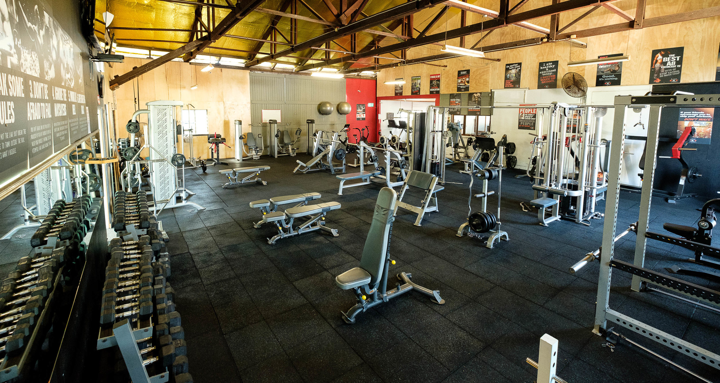 Live Fit - the gym.jpg