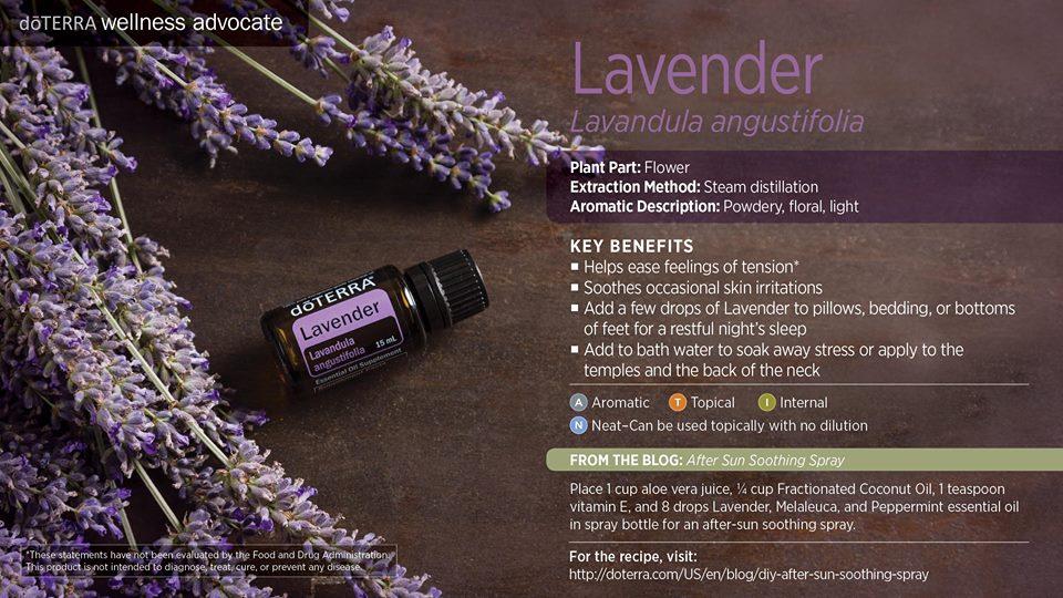 doterra-lavender-oil