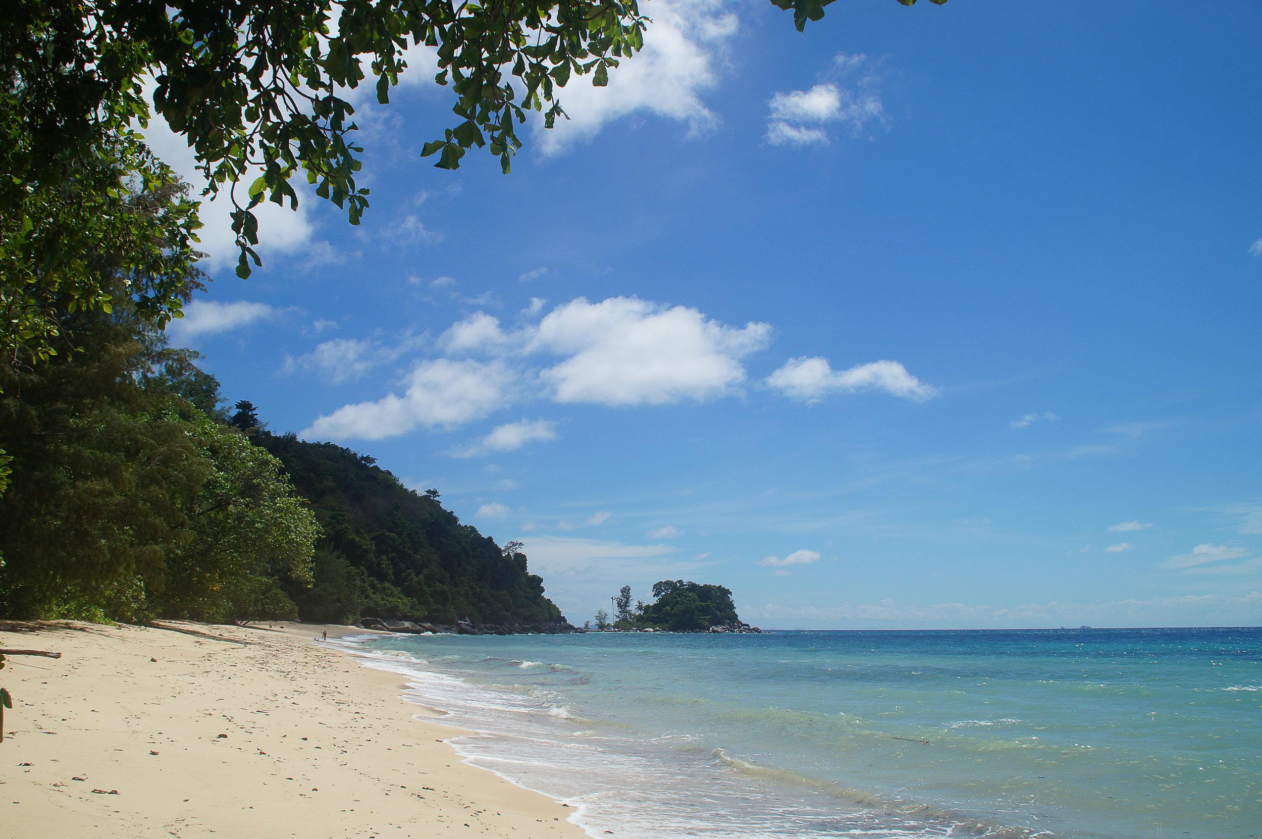 Tioman Island, Malaysia. The  Juara Turtle Project  protects Green and Hawksbill turtles.