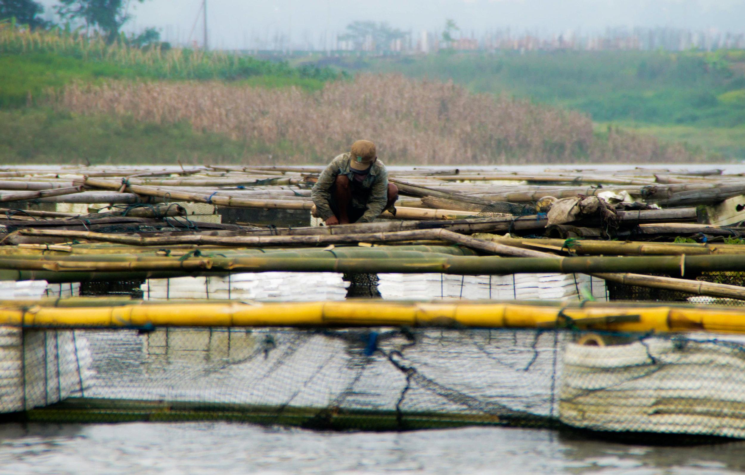 Fisherman in Indonesia.jpg