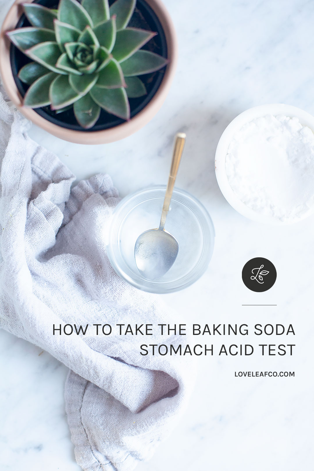 HOW TO TAKE THE BAKING SODA STOMACH ACID TEST | How to take the baking soda stomach acid test to help determine whether or not you have adequate stomach acid levels. A natural, easy, and affordable DIY test for healthy digestion. | LOVELEAF CO. NUTRITION #digestivehealth #digestion #holistichealth #wellness #nutrition #guthealth #bakingsoda #diy