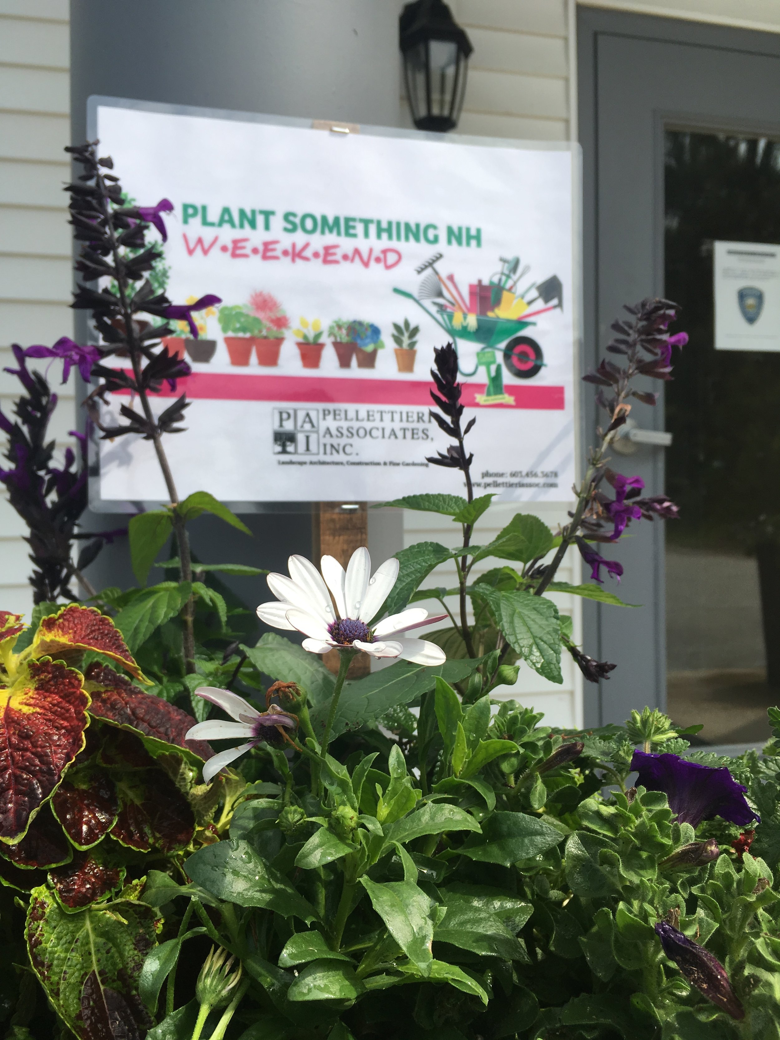 This year… - June 1st and June 2nd, our team will be creating planters for the Warner Police Department and Warner Police Department.Follow us on Facebook and Instagram to see how we're participating in this years #PlantSomethingNHWeekend!