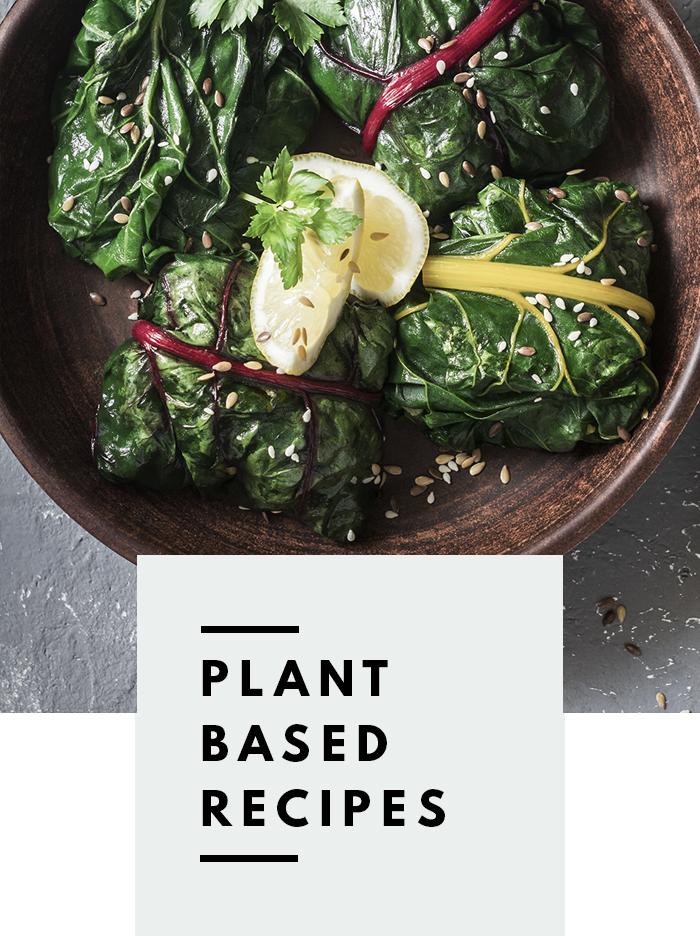 botanical-folk-plant-based-recipes.png