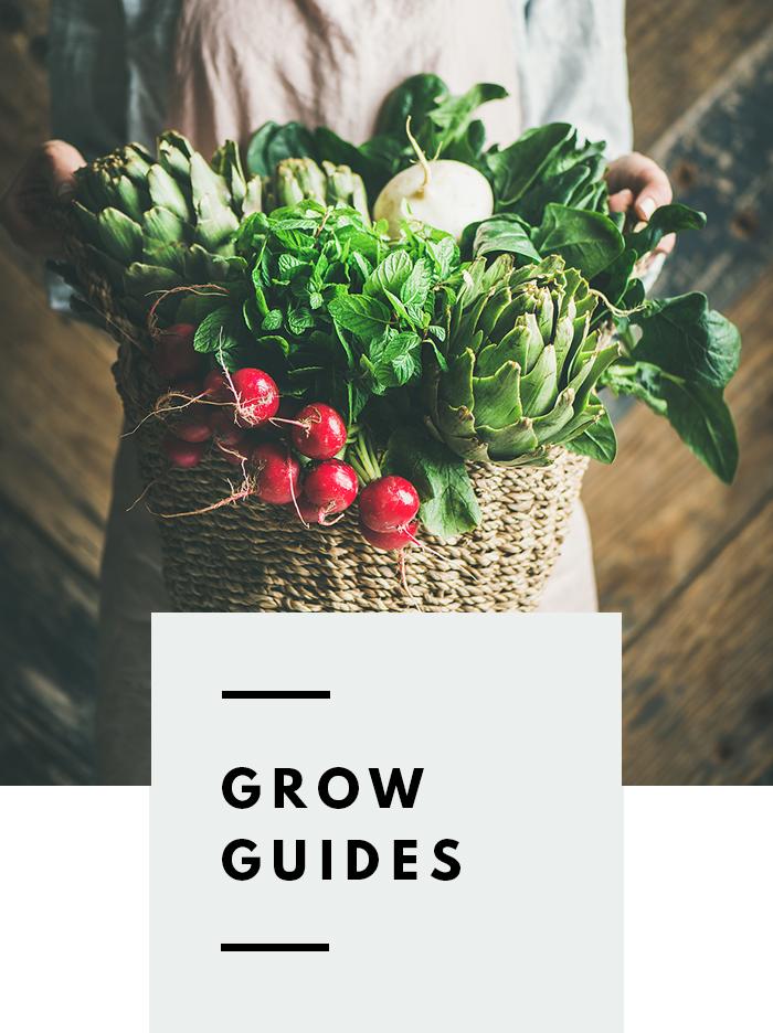 botanical-folk-grow-guides.png