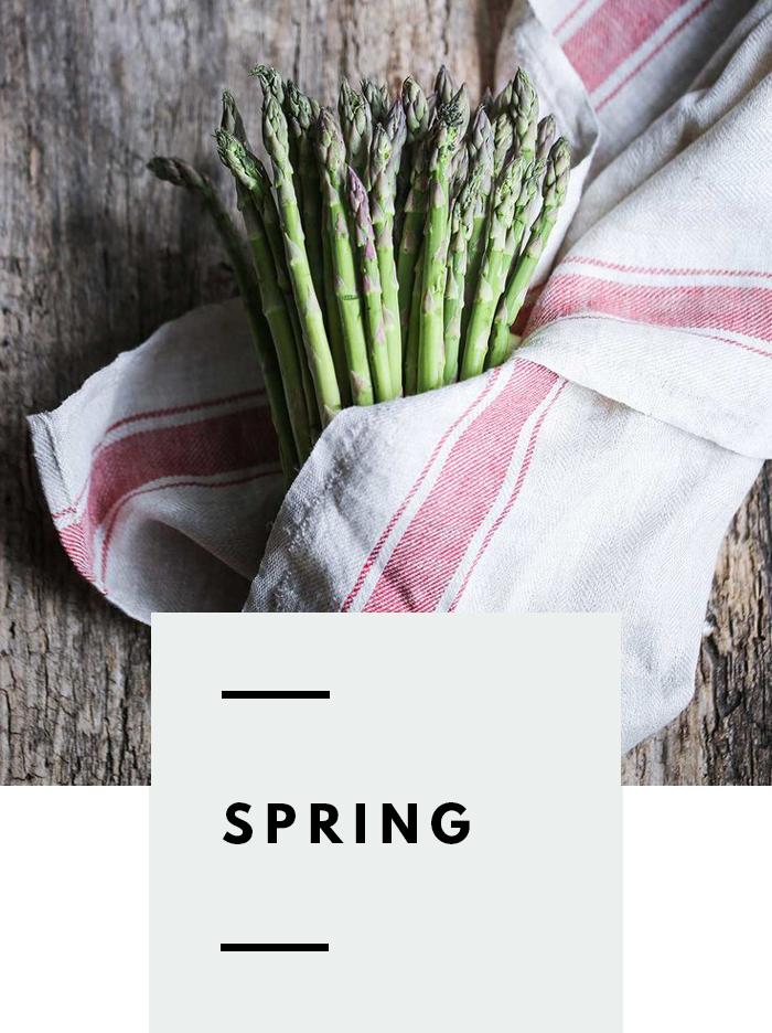 botanical-folk-spring-grow-guide.png