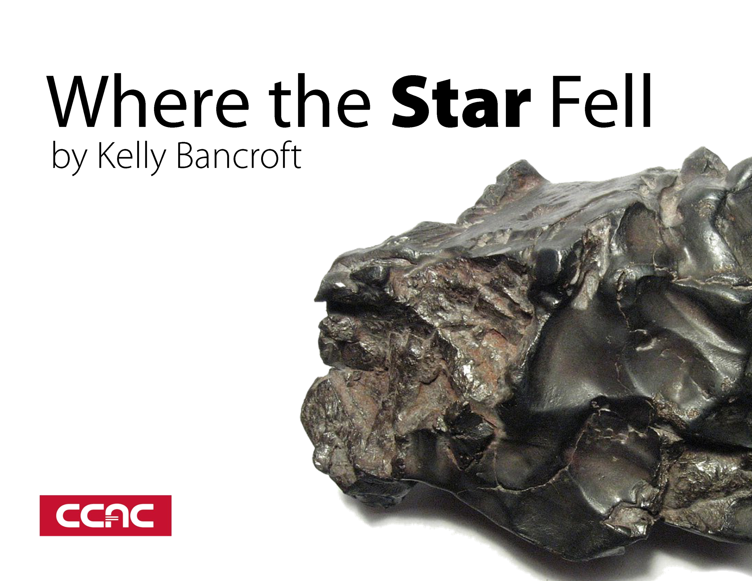 Where the Star Fell Poster.png