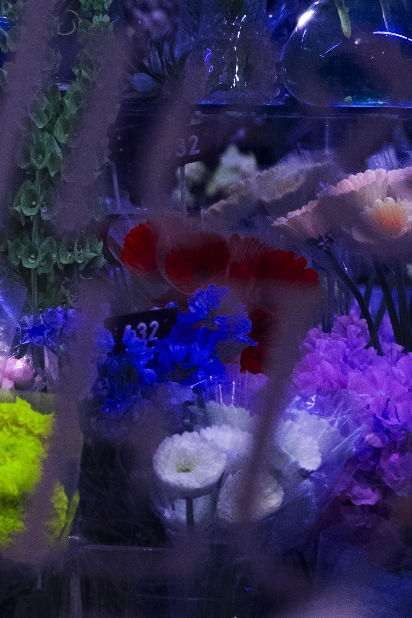 flowers crop 2.jpg