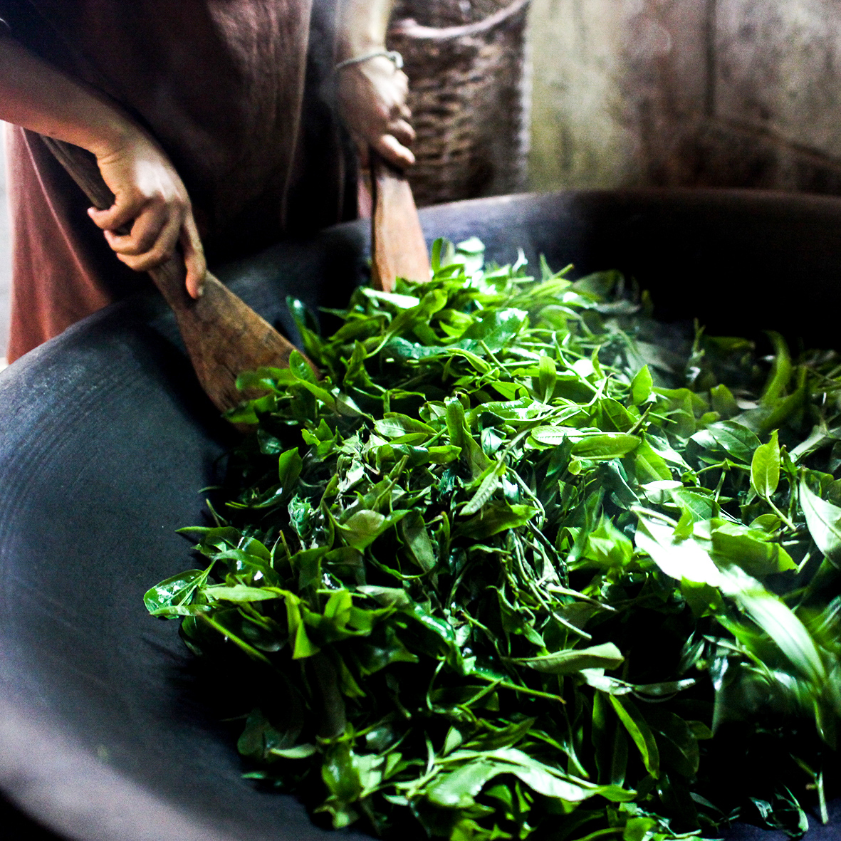 Lemoncha – Tea Firing