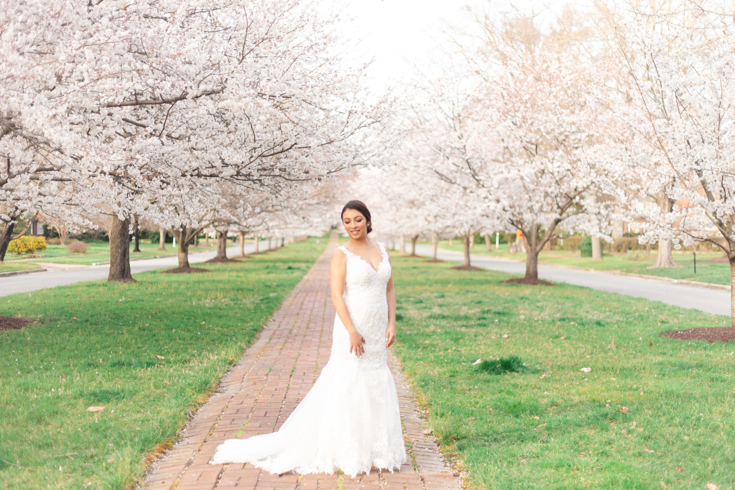 Richmond Cherry Blossom Bridal Session - Richmond VA Wedding Photographer MJ Mendoza Photography