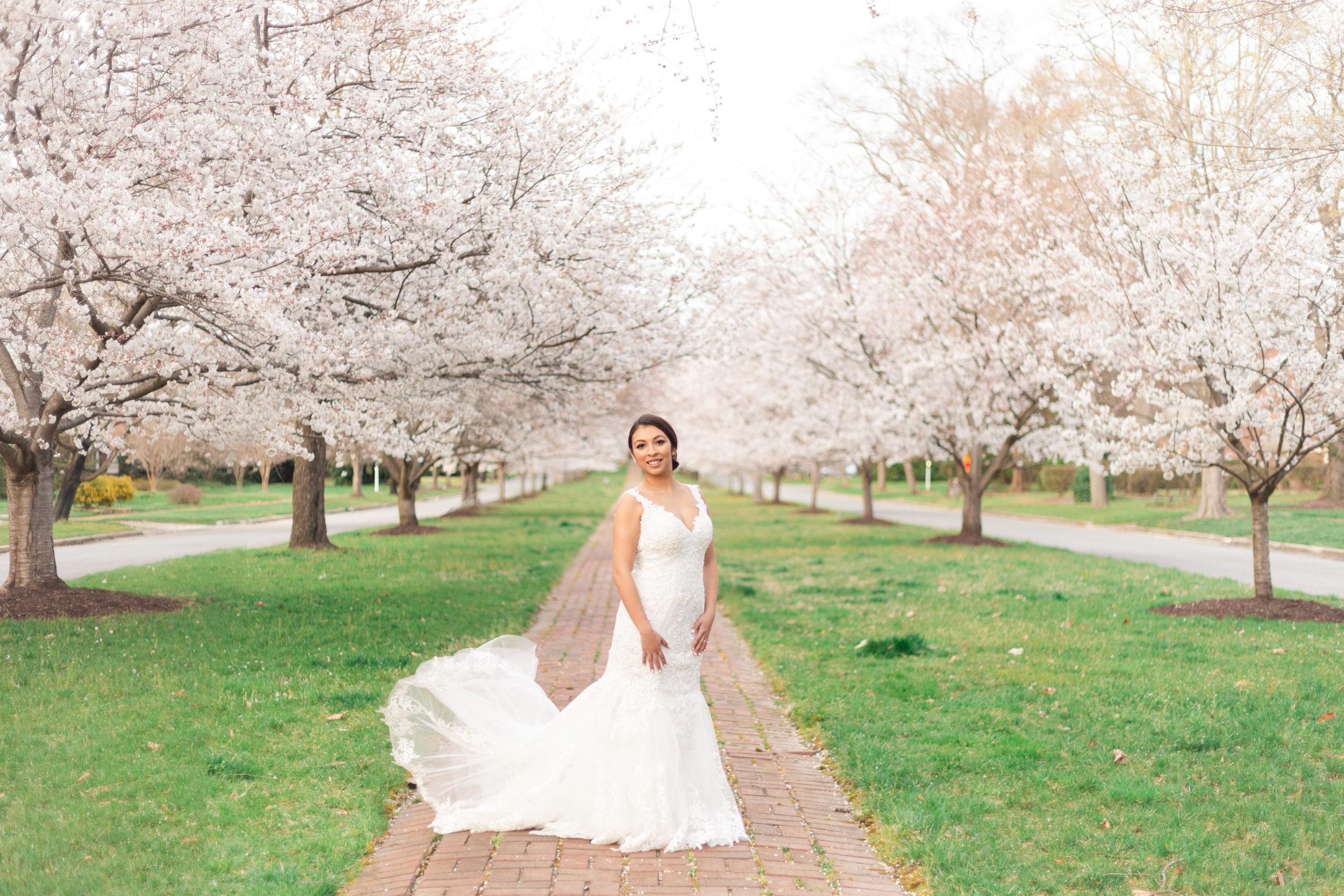 MJ Mendoza Photography - Richmond VA Cherry Blossom Bridal Session