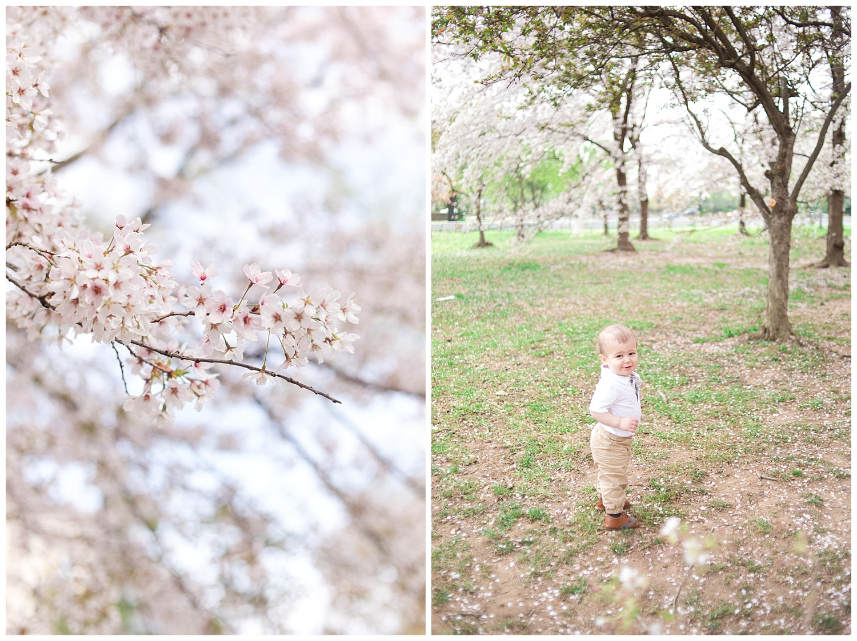 MJMP ShannanJohn DC Cherry Blossom Engagement Family photo_0007.jpg
