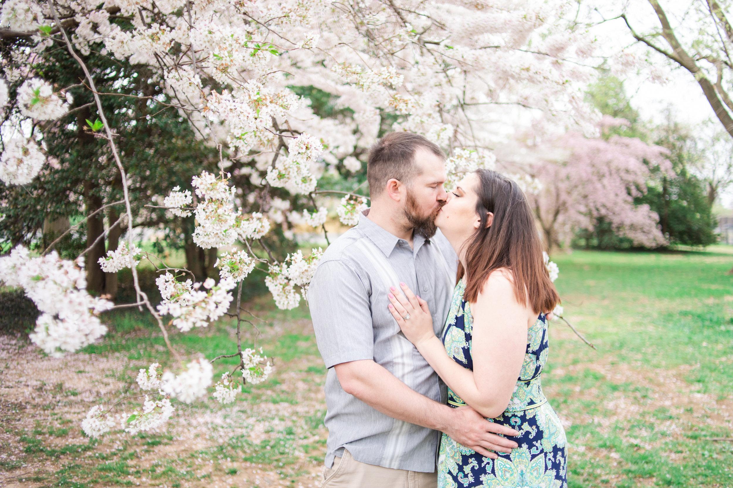mjmp shannanjohn dc cherry blossom engagement session-16.jpg