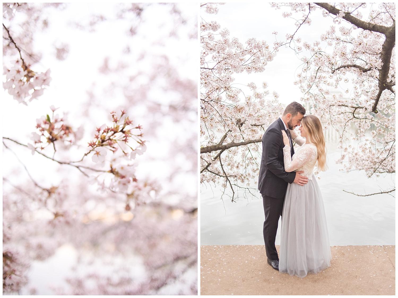Richmond Wedding Photographer Washington DC Cherry Blossom Engagement Photo_0011.jpg