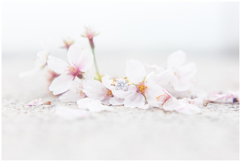 Richmond Wedding Photographer Washington DC Cherry Blossom Engagement Photo_0017.jpg