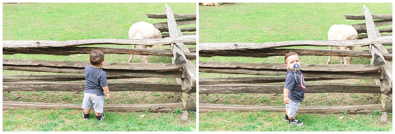 Richmond Wedding Photographer Mount Vernon Washington DC Trip_0008.jpg