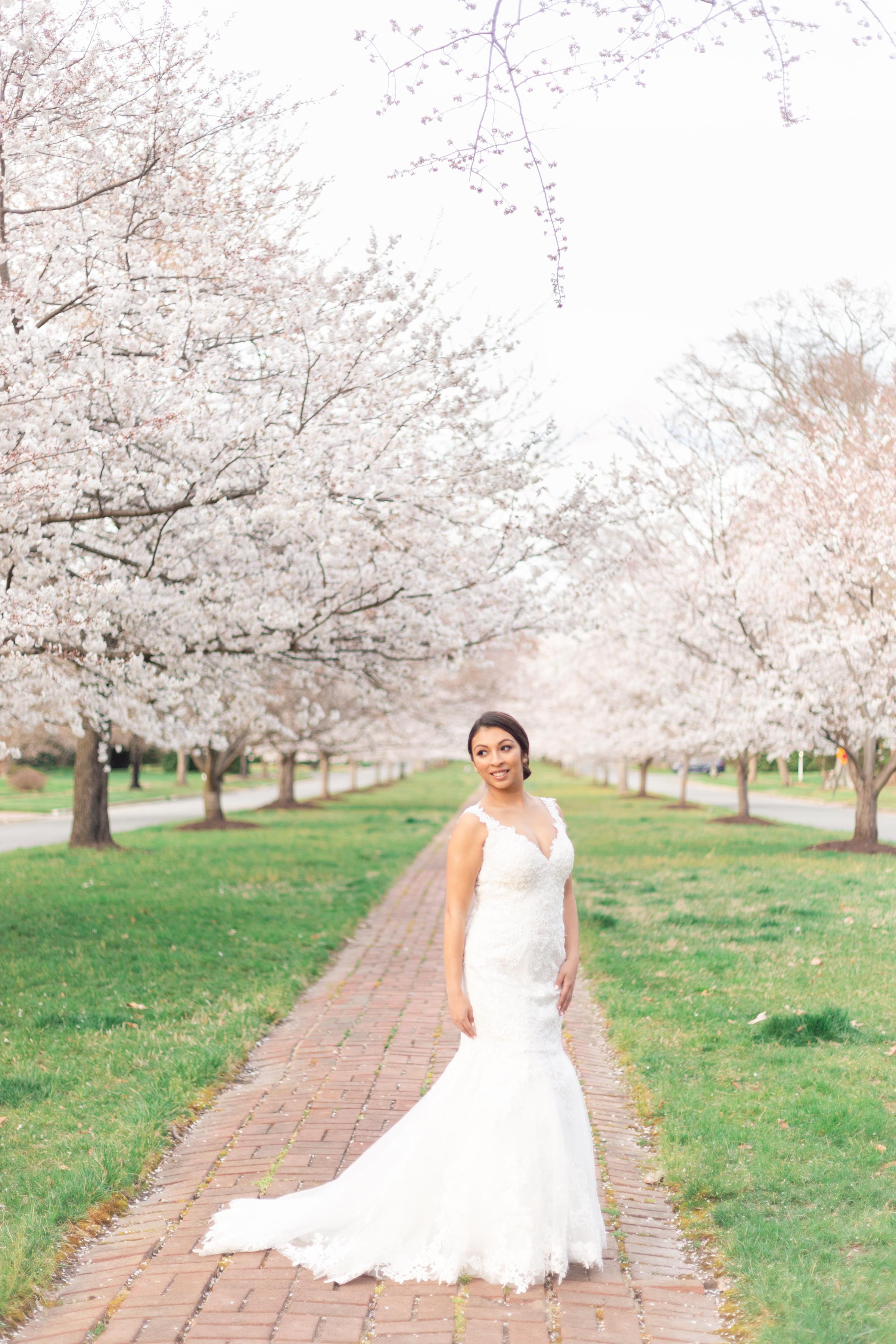 Richmond Cherry Blossom Bridal Session
