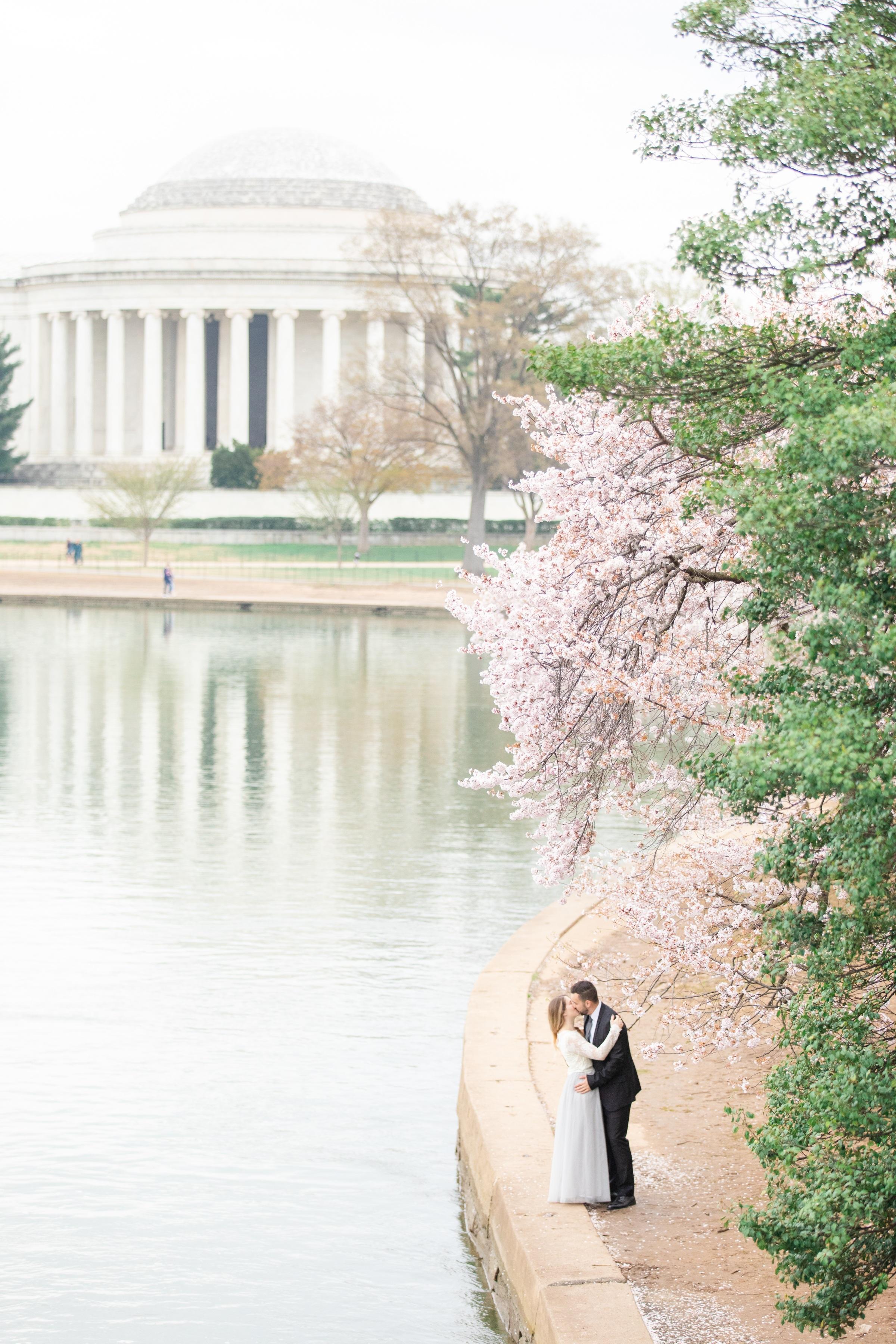 Jefferson Memorial Cherry Blossom Engagement
