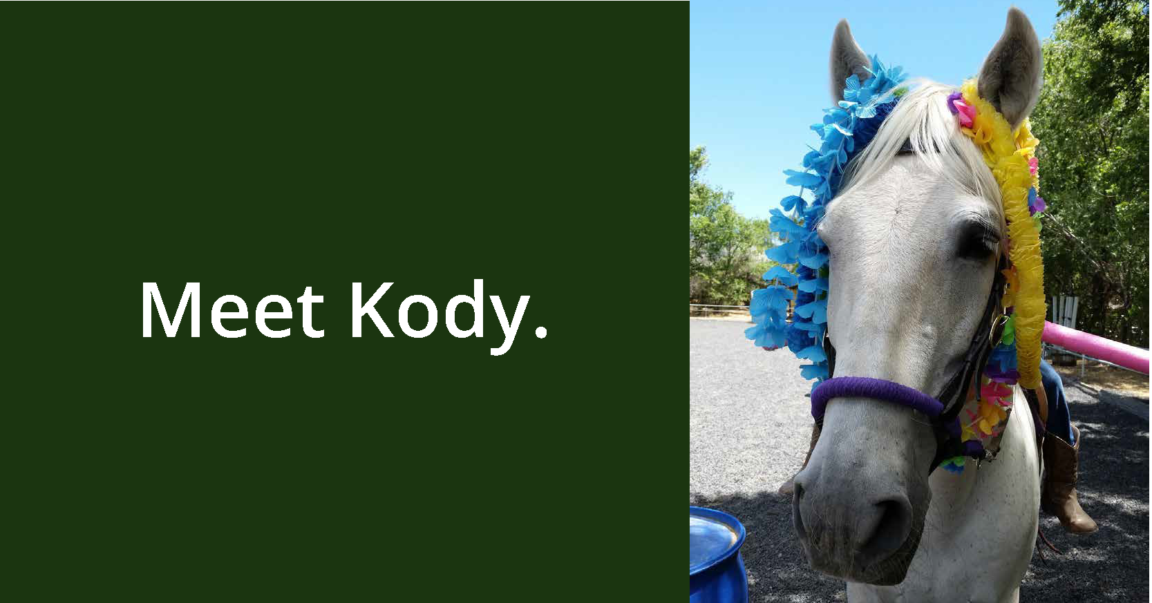 Meet Kody GIF_Page_1.png