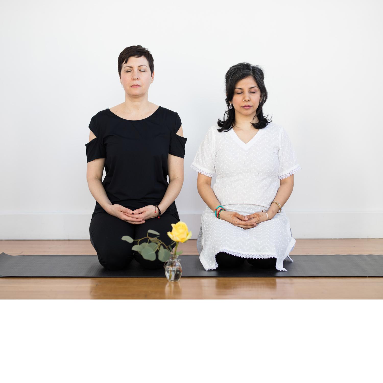 allison-shehla-meditating_1500px.jpg