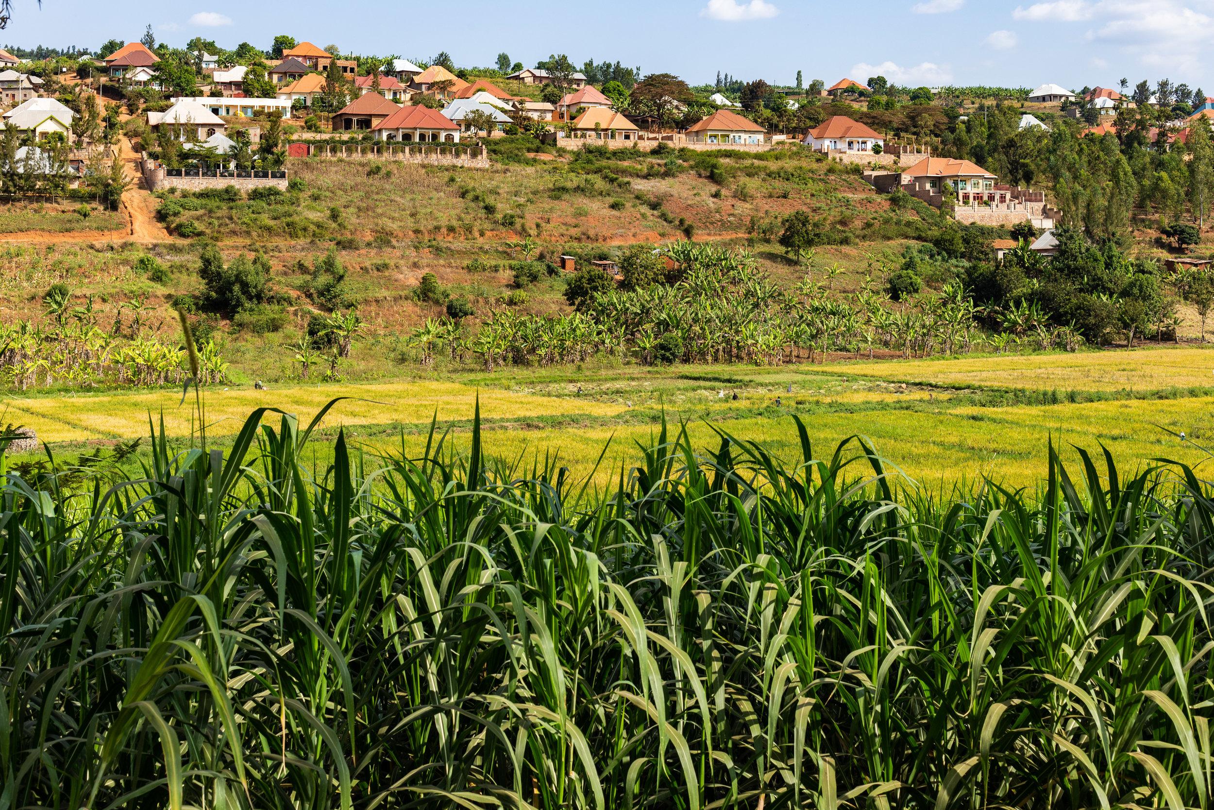 Rwanda Kigali .jpg