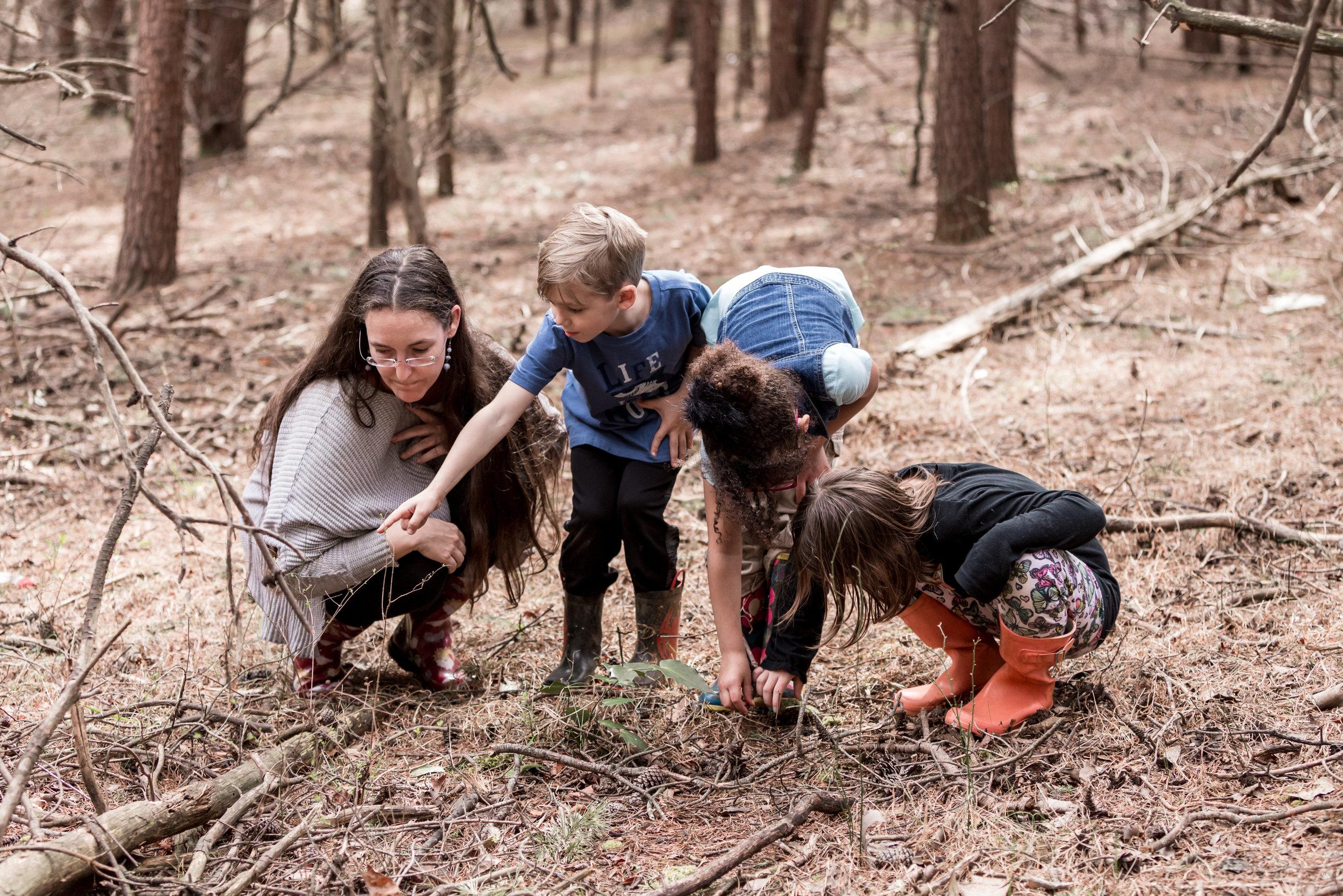montessori_blue_ridge_forest_virginia_volunteer_children_school_liberty_university_lynchburg_college_randolph_education_lynchburg_internships