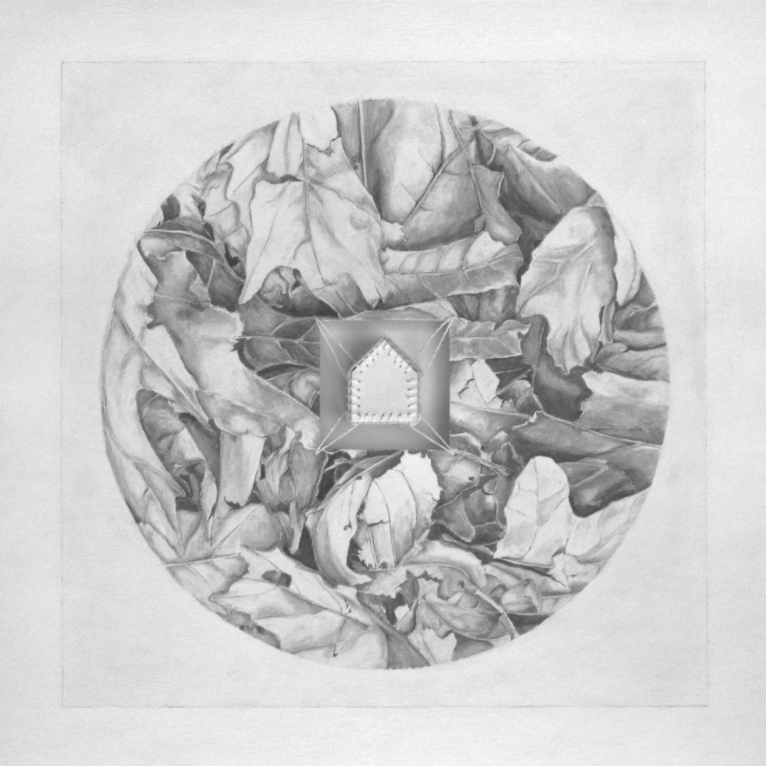 Circle Series I