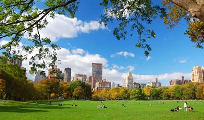 picnic in central park.jpg